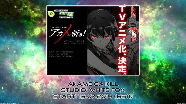 01. Akame ga Kill
